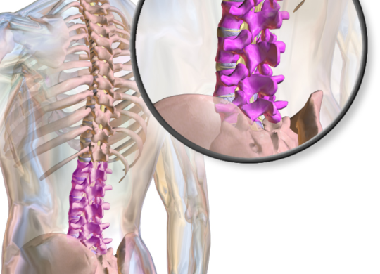 lower back pain disc problems